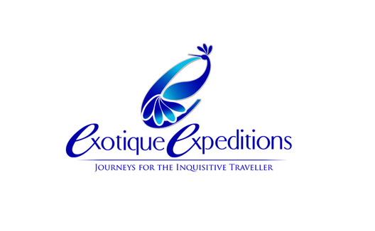 Logo Design for Travel Company in India